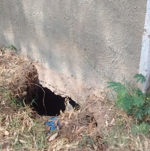 The Water Project:  A Hole In One Of The Latrines