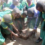 The Water Project : 4-kenya4663-students-playing