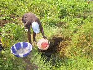 The Water Project : 4-sierraleone5121-alternative-water-source