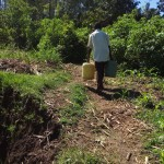 The Water Project: Emarembwa Community -  Protected Spring