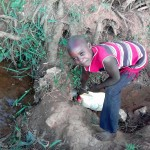 The Water Project: Igogwa Community -  Christine Fetching Water