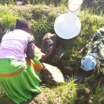 The Water Project: Shikoti Community, Amboka Spring -  Fetching Water