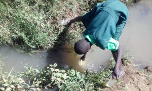 The Water Project : 7-kenya4692-fetching-water