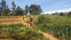The Water Project : 7-kenya4729-women-carrying-water