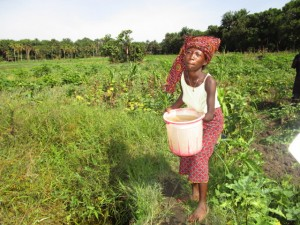 The Water Project : 8-sierraleone5121-alternative-water-source