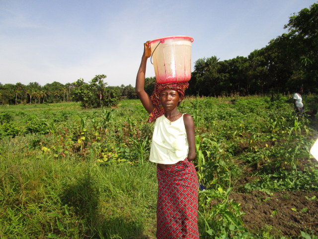 The Water Project : 9-sierraleone5121-alternative-water-source