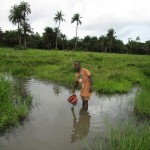 The Water Project : 1-sierraleone5130-swamp-water
