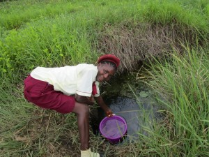 The Water Project : 1-sierraleone5132-swamp