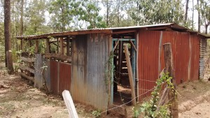 The Water Project : 14-kenya4742-cattle-shed