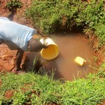 The Water Project: Nyira Community, Ondiek Spring -  Filling Bucket