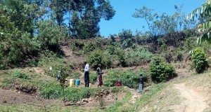 The Water Project : 2-kenya4739-spring-environment