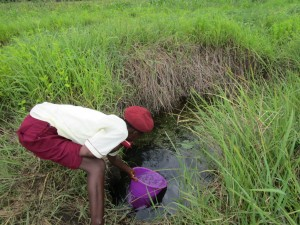 The Water Project : 3-sierraleone5132-swamp