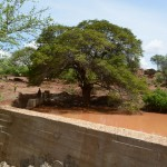 The Water Project: Maluvyu Community -  Finished Sand Dam