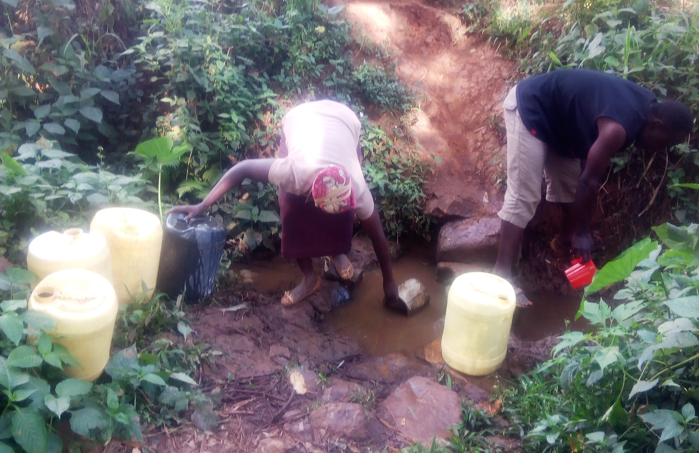 The Water Project : 4-kenya4738-fetching-water-from-shihachi-spring