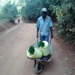 The Water Project: Wamuhila Community -  Man Carries Water With Leaf Lids