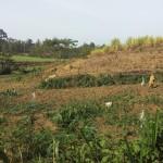 The Water Project : 8-kenya4718-community-landscape