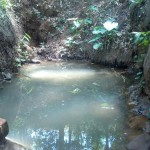 The Water Project: Elunyu Community, Saina Spring -  Saina Spring