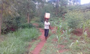 The Water Project:  Alice Balances A Jerrycan Full Of Water From The Newly Constructed Kitinga Spring