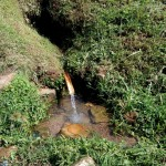 The Water Project: Shivagala Community, Paul Chengoli Spring -  Chengoli Spring