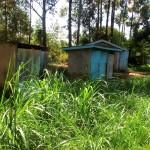 The Water Project: St. Antony Shijiko Primary School -  Latrines