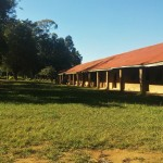 The Water Project: Eregi Mixed Primary School -  School Grounds
