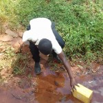 The Water Project: Mudete Community -  Fetching Water From Wadimbu Spring