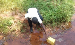 The Water Project:  Fetching Water From Wadimbu Spring