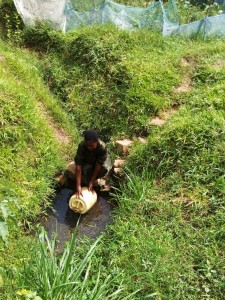 The Water Project:  Mrs Enani Fetching Water