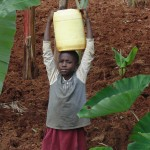The Water Project: Ebuhando Community -  Carrying Water