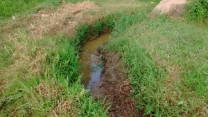 The Water Project:  Stagnant Water Where Mosquitos Breed