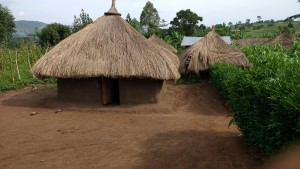 The Water Project:  Ejinga Household