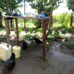 The Water Project: Chegulo Community, Shakava Spring -  Sample Dishrack