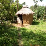 The Water Project: Chegulo Community -  Sample Latrine