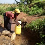The Water Project: Matsakha A Community, Kombwa Spring -  Lady Fetching Water At The Spring