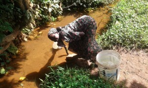 The Water Project:  Alice Odari Fetching Water