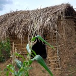 The Water Project: Karongo-Dum Community -  Latrine