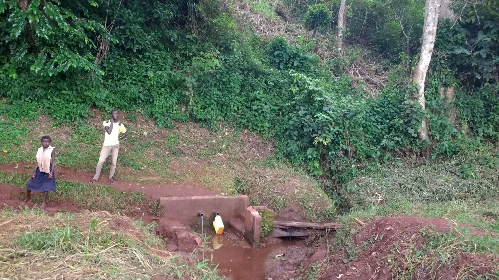 The Water Project : 1-uganda6086-spring