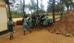 The Water Project:  Children Helping Carry Stones