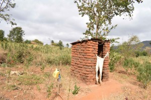 The Water Project:  Annah Muia Latrine