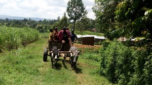The Water Project : 11-kenya4848-delivery-of-little-helpers