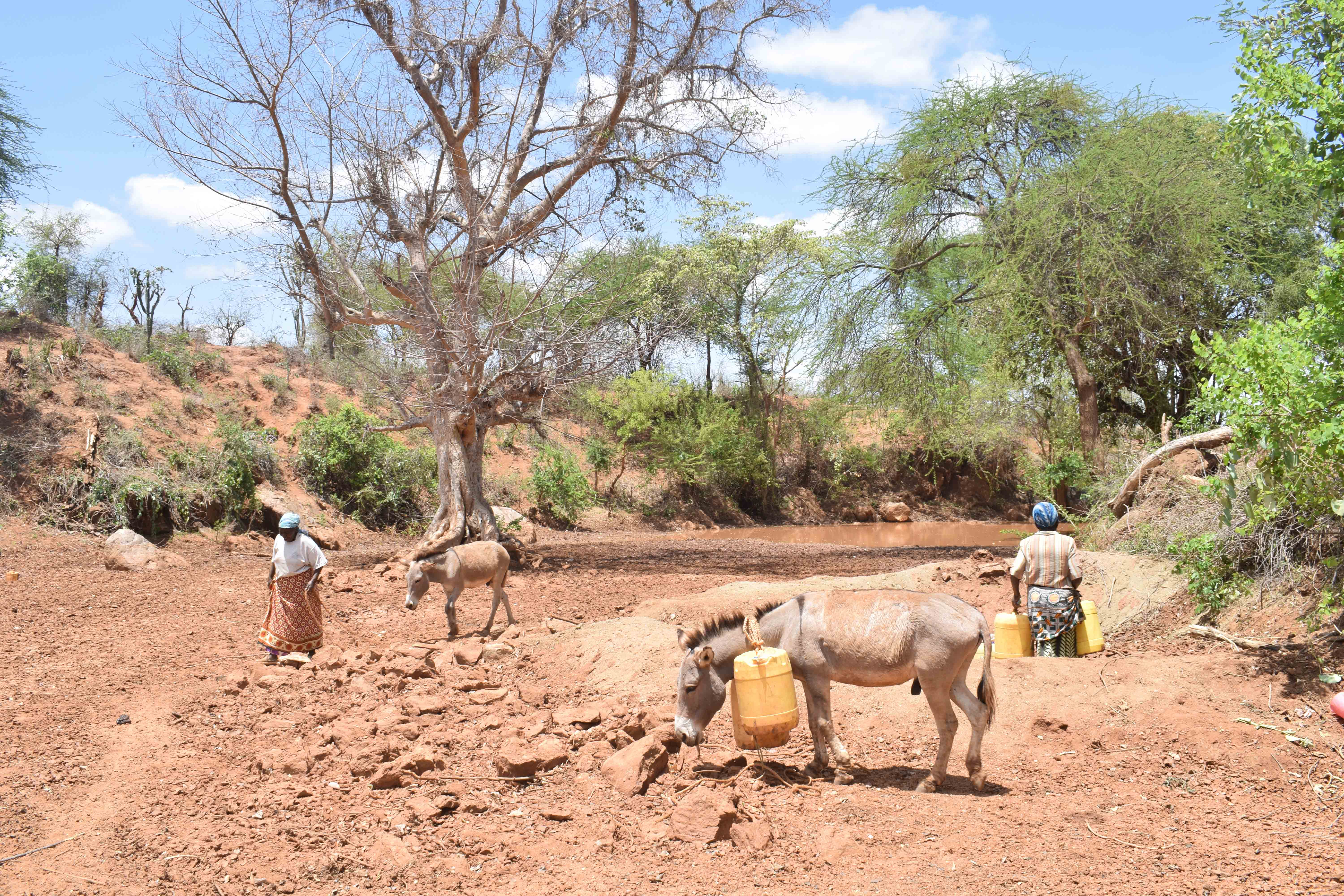 The Water Project : 12-kenya4860-river-nuu