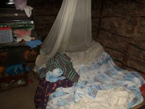 The Water Project:  Mosquito Net