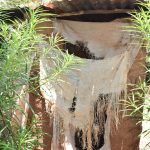 The Water Project: Kyumbe Community -  Latrine