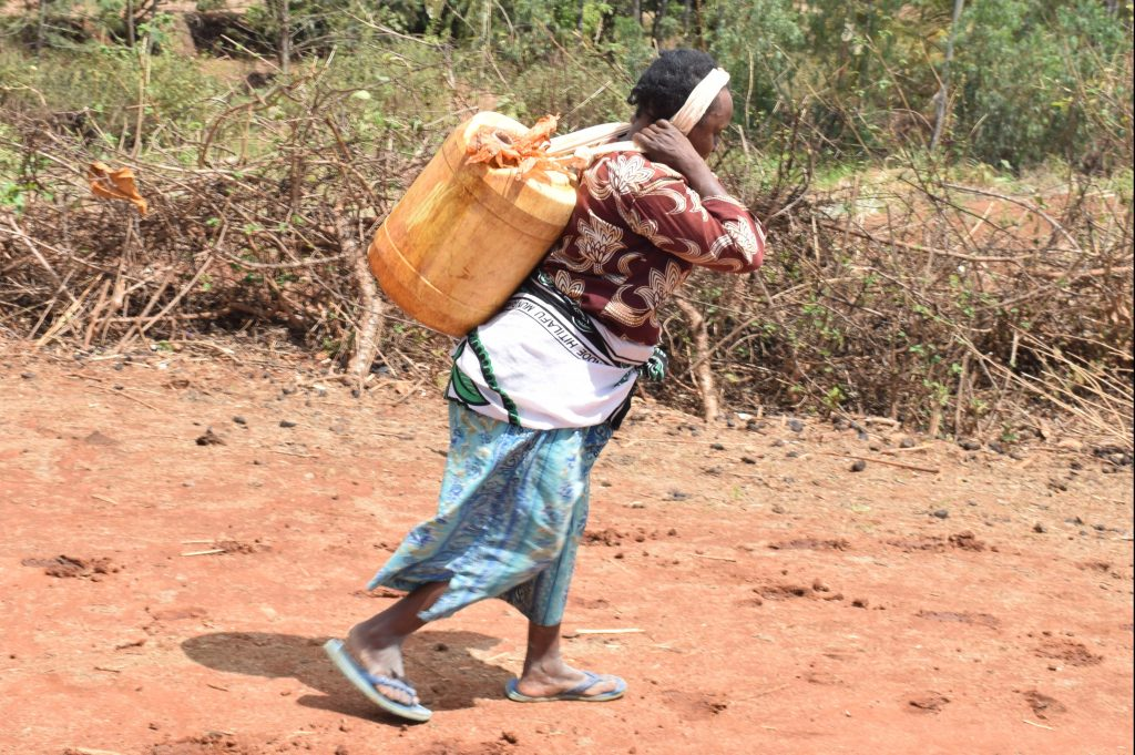 The Water Project : 16-kenya4862-only-clean-water-source-in-the-area