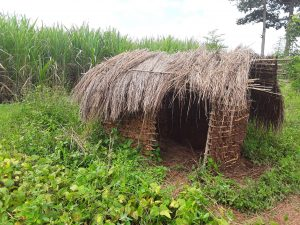 The Water Project : 7-uganda6079-various-latrine-conditions