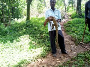 The Water Project : 15-kenya4738-mr-kiki-with-lizard