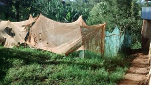 The Water Project:  Mosquito Nets Used Around Garden