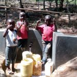 The Water Project: Mkunzulu Community, Museywa Spring -  Clean Water