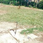 The Water Project: Munyanda Primary School -  Dry Tap
