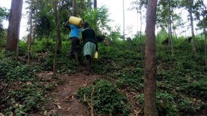 The Water Project:  Students Walking Back To School With More Water